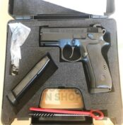 protected_021620090223CZ75-1.jpg